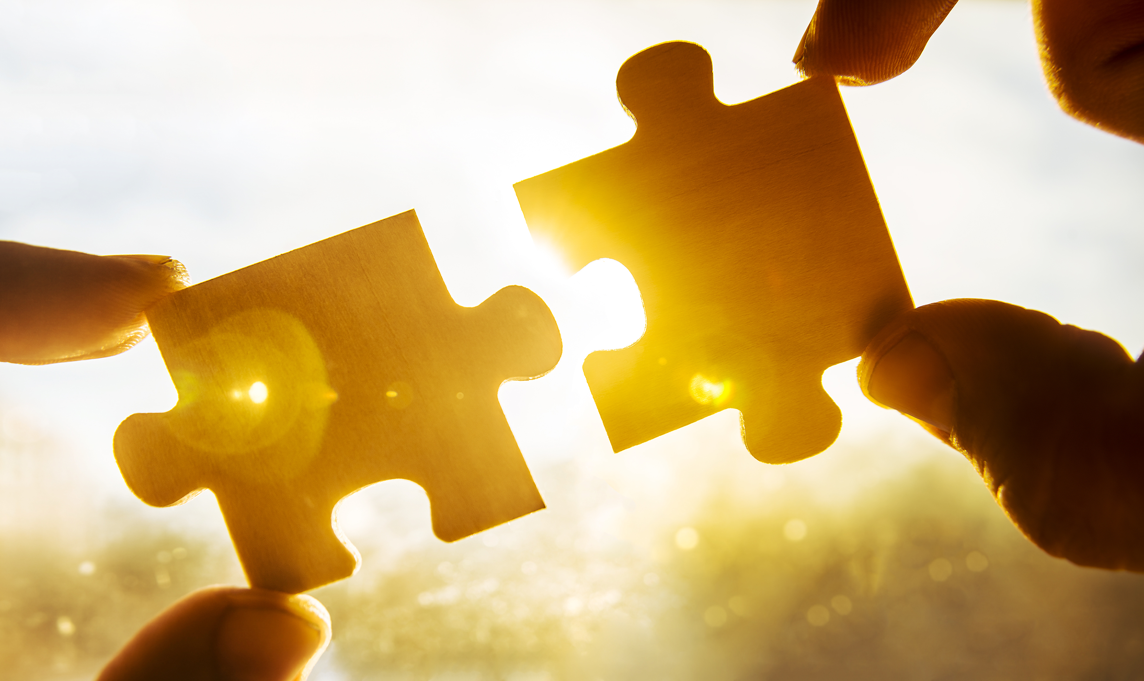 Hands holding 2 puzzle pieces that fit together, with sun shining around and between the puzzle pieces